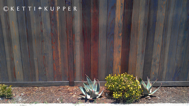 Gray Stained Fence With New Native Plants Contemporary