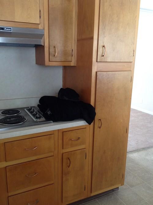 Update this mid century kitchen?