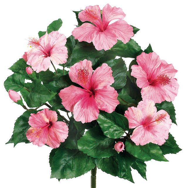 Silk Plants Direct Hibiscus Bush Pack Of 12 Traditional