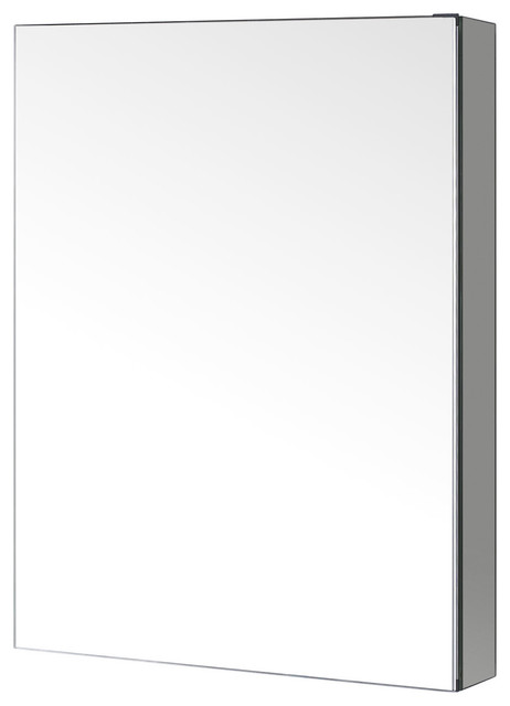 "Confiant 20"" Mirrored Medicine Cabinet Recessed Or Surface Mount."