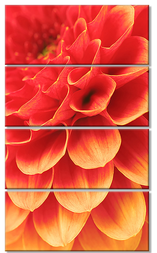 Abstract Orange Flower And Petals Floral Canvas Art Print 28 X48 4 Panels Contemporary Prints And Posters By Design Art Usa
