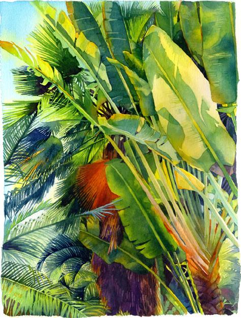 Cayman Palm Watercolor Art.