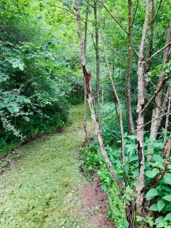 Une cabane dans les bois dans les Ardennes belges 1
