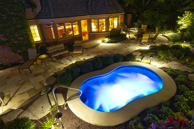 Freeform Outdoor Inground Swimming Pools Chicago By