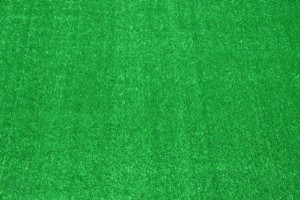 Dean Indoor/Outdoor Carpet Green Artificial Grass Turf Area Rug 12' x 12'