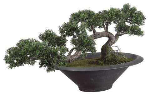 Silk Plants Direct Cedar Bonsai Tree Green Pack Of 1 Artificial Plants And Trees By Silk Plants Direct