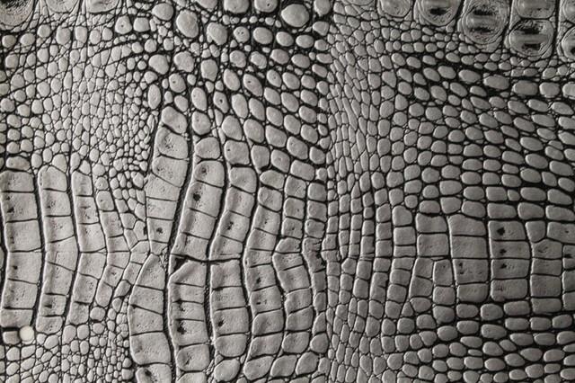 Alligator 3267