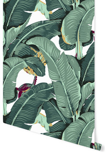 Banana Leaf L And Stick Wallpaper Tropical By Accent Wall Customs