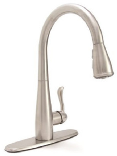 kitchen sink faucet premier sanibel single handle kitchen faucet with pull out 2701