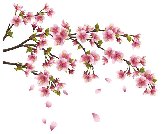 Cherry Blossom Branch Wall Decal Asian Wall Decals Part 95