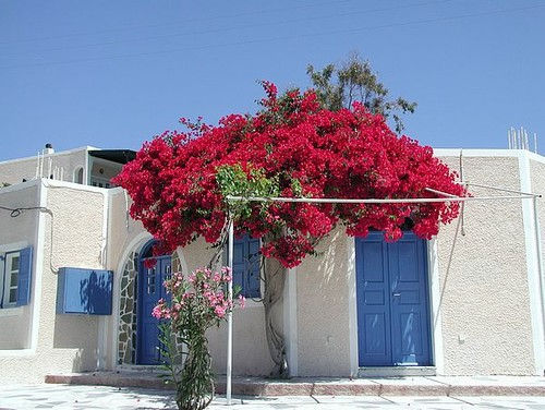Greek House mediterranean exterior