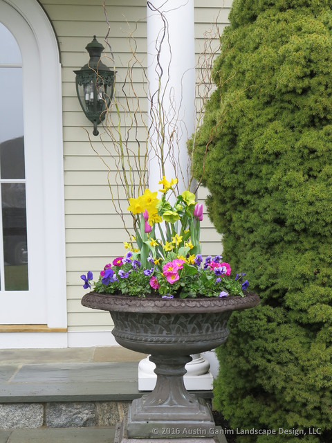 Planter & Container Garden Design - Fairfield County, CT traditional-landscape