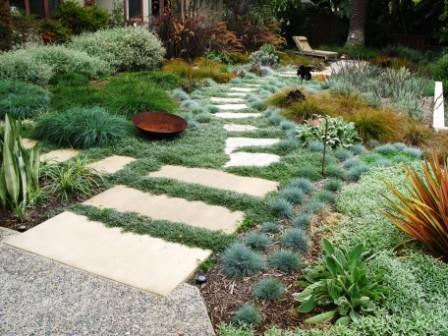 debora carl landscape design - Contemporary - Landscape ...