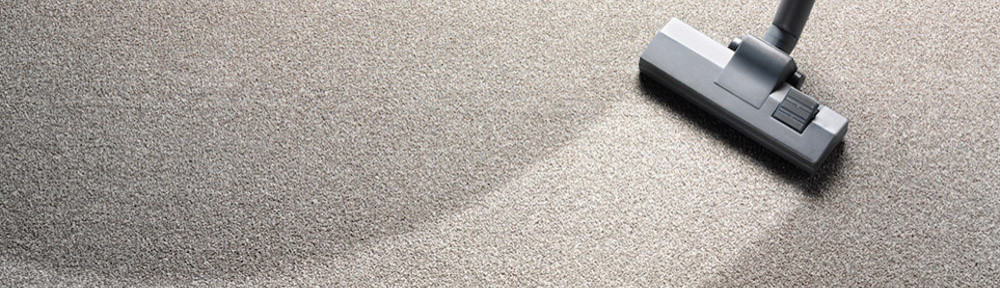 Carpet Cleaning Ottawa Reviews Floor Matttroy