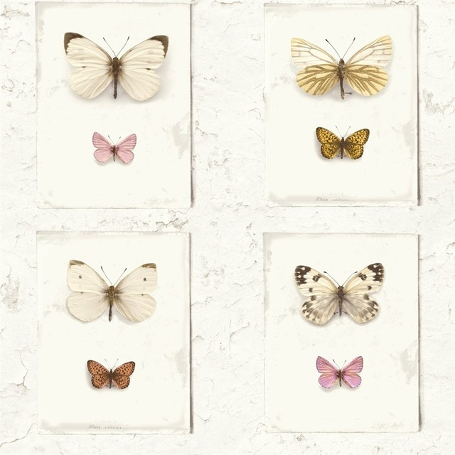 Butterfly Weathered Rustic Off White Pink Flutter Wallpaper