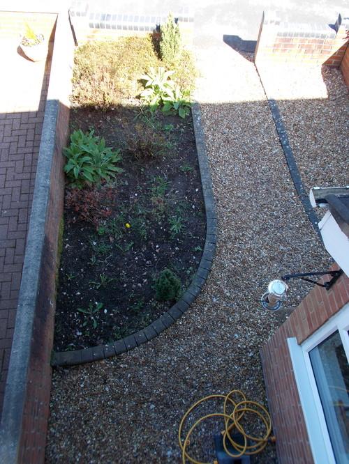 Please help me with my 39 garden 39 for Help design my garden