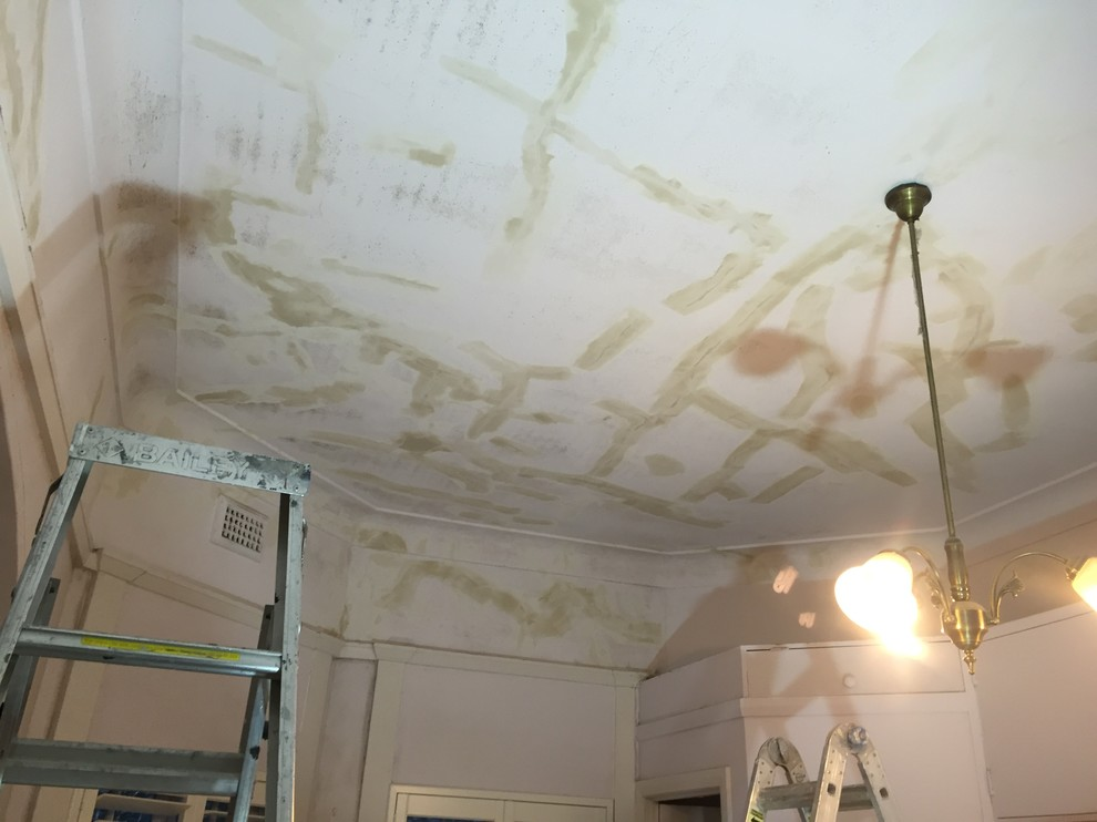CEILING RESTORATION AND TIMBER IN ENAMEL
