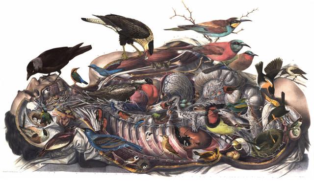 "Altar"" Altered Art Paper Collage, Vintage Bird and Anatomy"