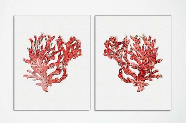 Coral Red Coral Prints Custom Sizes Available Beach Style Home Decor