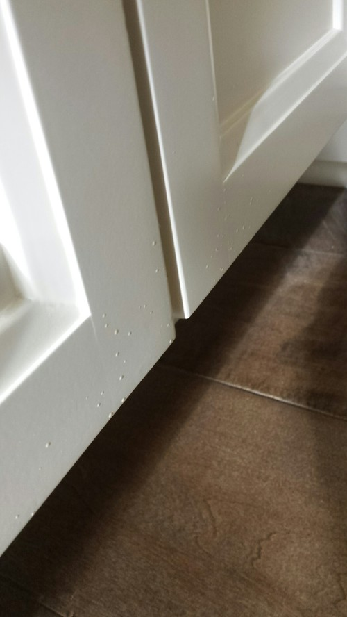Shoddy work - Major cabinet finish issues