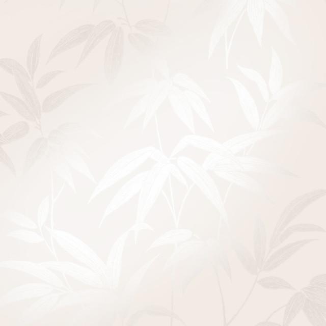 Sasa Beige Bamboo Leaf Wallpaper Bolt.