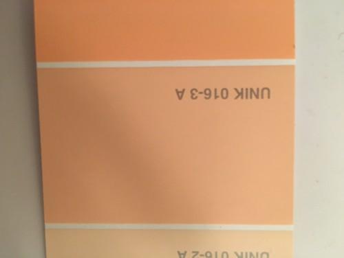 bonjour tout le monde j39ai besoin d39aide pour des With couleur gris taupe pour salon 7 help besoin daide pour choisir ma couleur de peinture