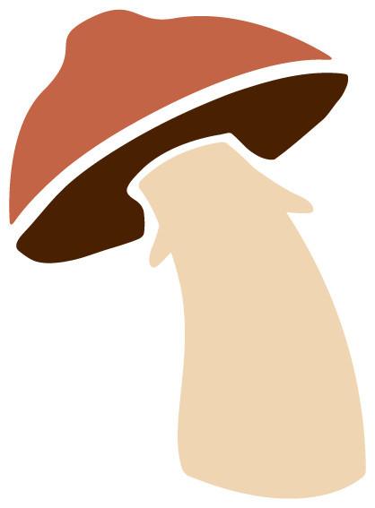 1000  images about Mario mushroom on Pinterest