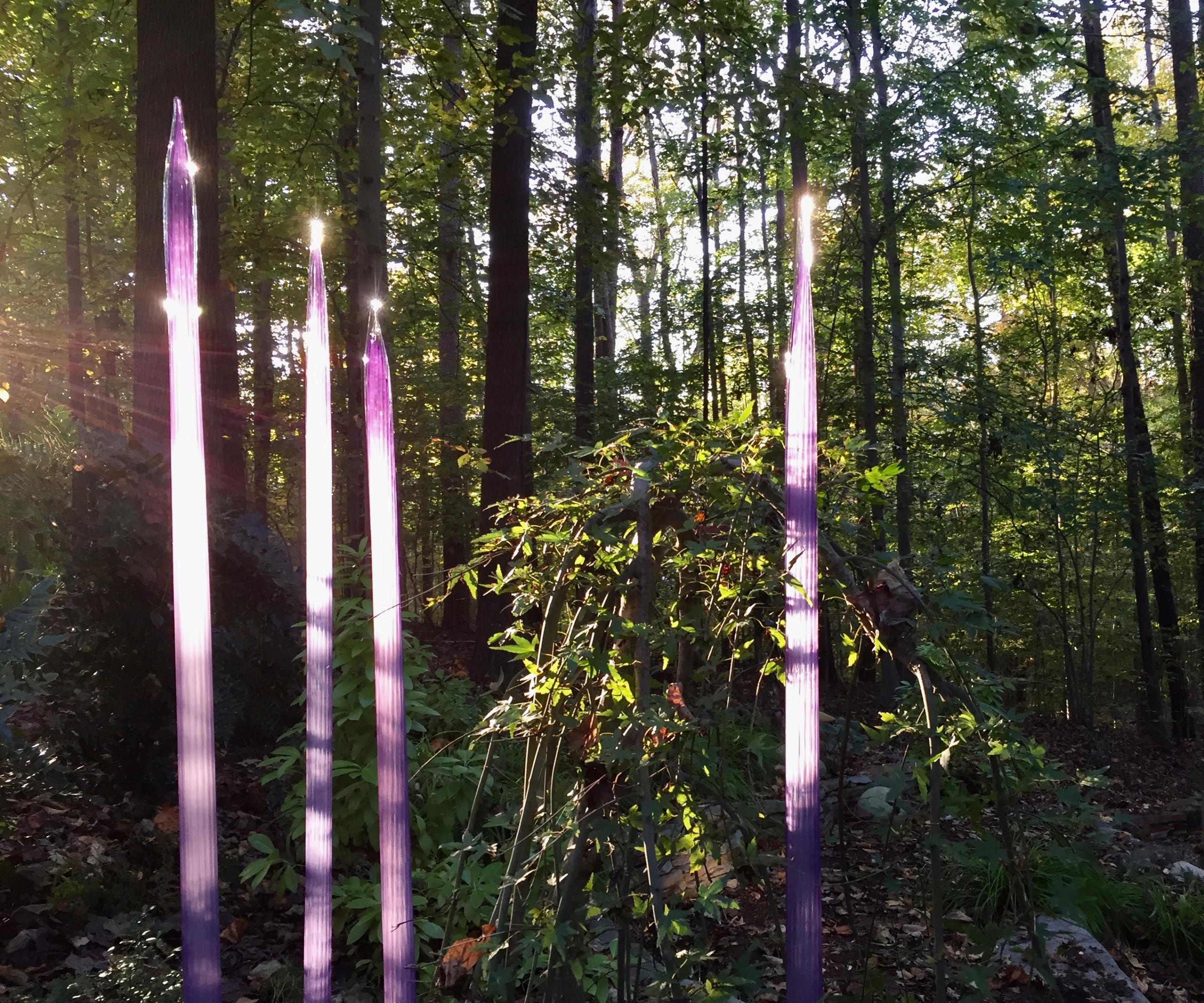 Glass Art Brings Magic As It Plays With the Setting Sun