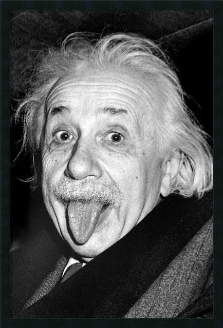 Shop Houzz Amanti Art Albert Einstein Funny Face Framed