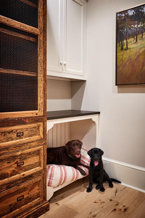 12 coins cosy à aménager pour le confort de votre chien