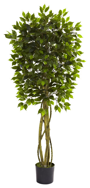 thornwood artificial ficus tree - traditional - artificial plants