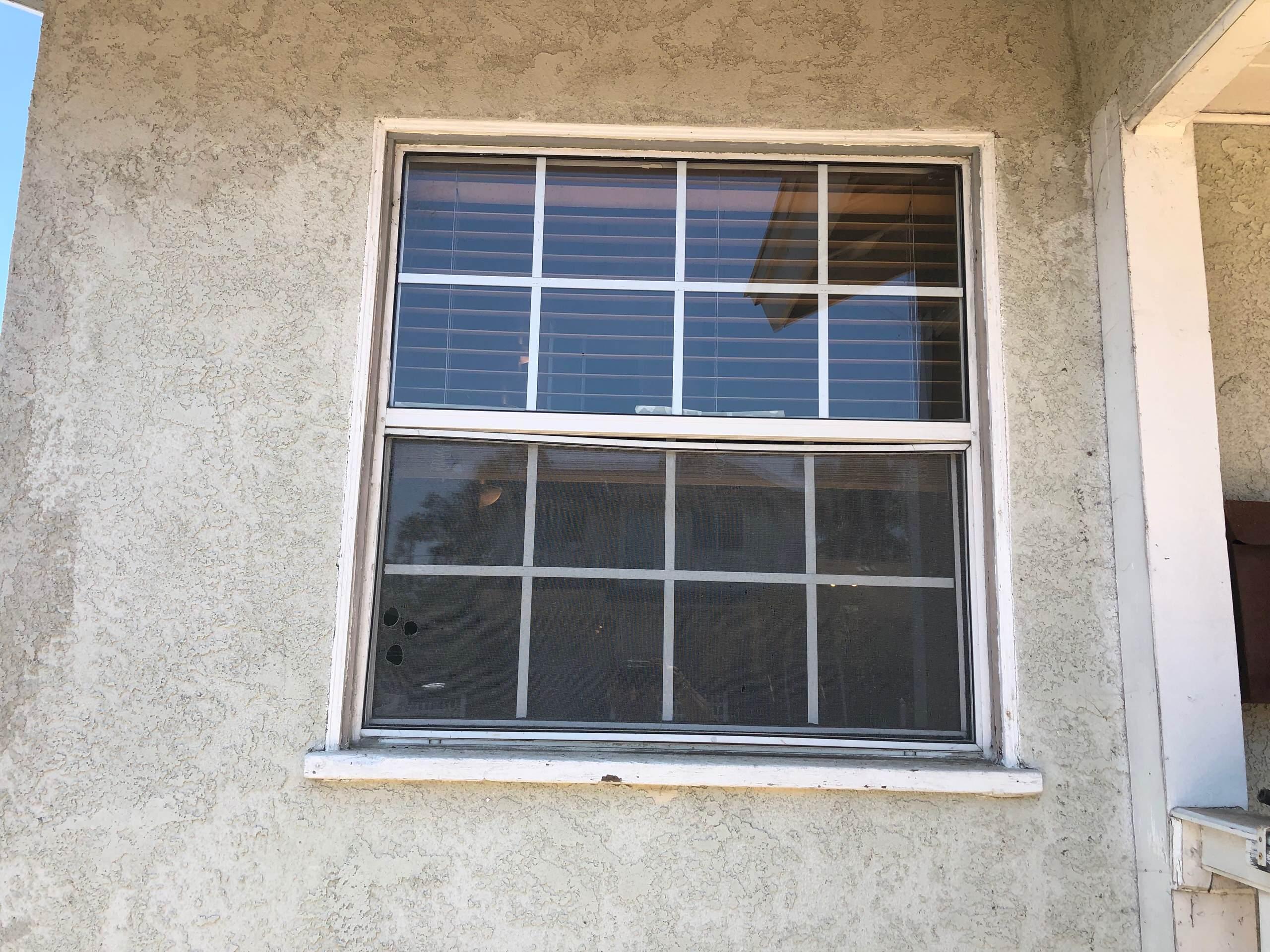 Kathleen - Windows