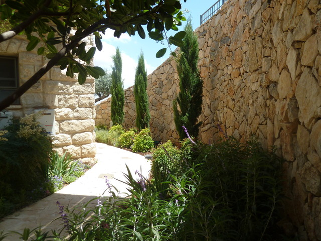 cupressus sempervirens 39 totem 39 trees along the wall to. Black Bedroom Furniture Sets. Home Design Ideas