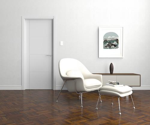 High Gloss Or Matte Paint Door Finish