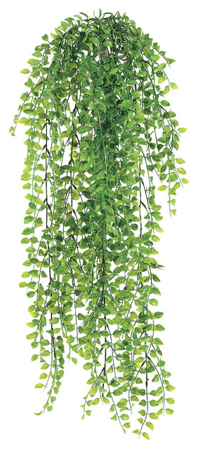 Silk Plants Direct Pea Leaf Hanging Bush, Pack of 12 - Traditional - Artificial Flowers Plants ...