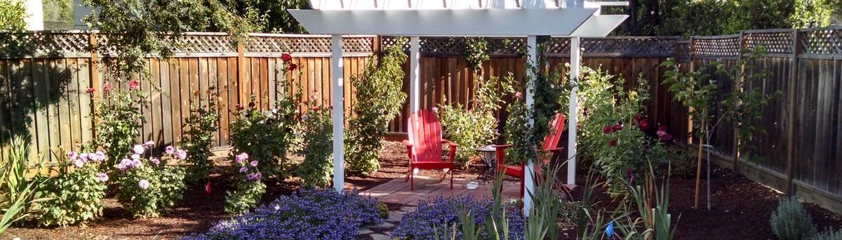 San Francisco Urban Garden | Houzz
