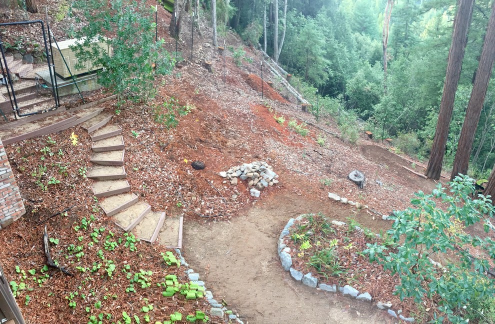"""The hillside """"before,"""" and after some tree removal. No redwoods were harmed..."""