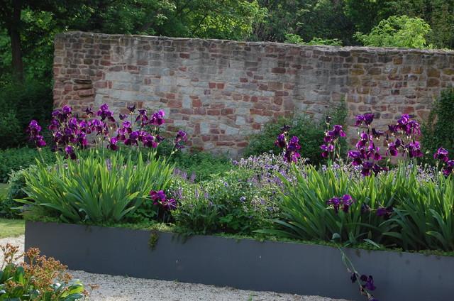 staudengarten am pfarrhaus bad hersfeld iris salbei und geranium modern sonstige von. Black Bedroom Furniture Sets. Home Design Ideas