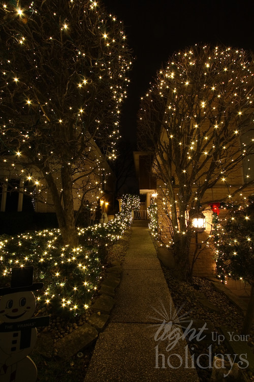 Outdoor Christmas Lighting & Decor
