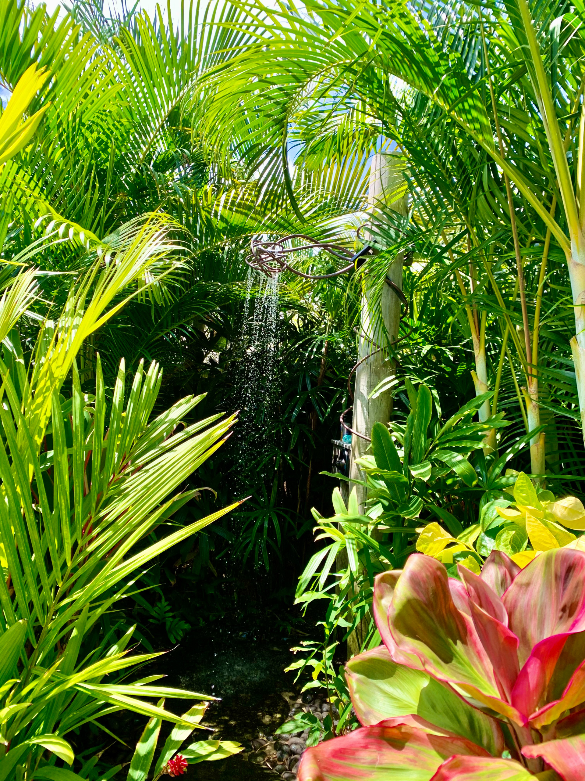 Natural Tropical Designs/Outdoor Shower