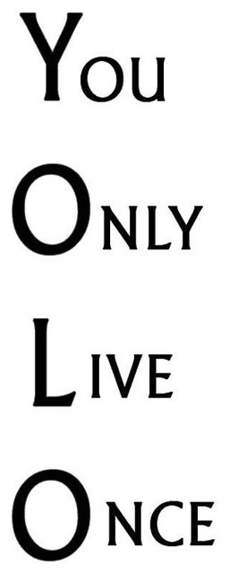 YOLO Motivational Quotes /& Phrases Gym Classroom Poster You Only Live Once