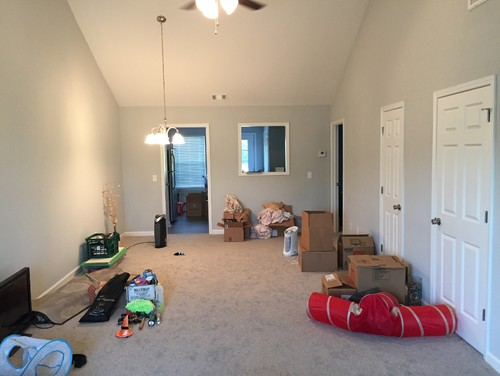 LAYOUT Help   New Furniture Needed In Living/Dining Room Combo