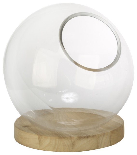 "14"" Glass Globe with Natural Wood Base"