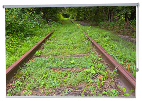 """railway Track Green"" Artwork, 3&x27; Shade, Partial Sheer, Left."