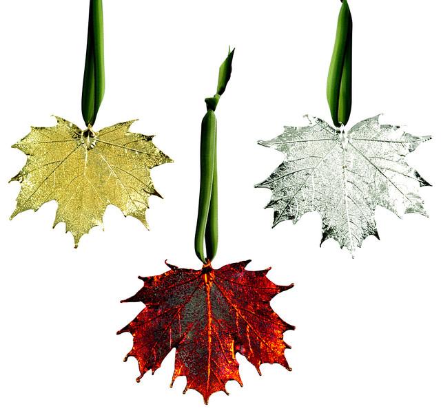 Real Sugar Maple Leaf Ornament