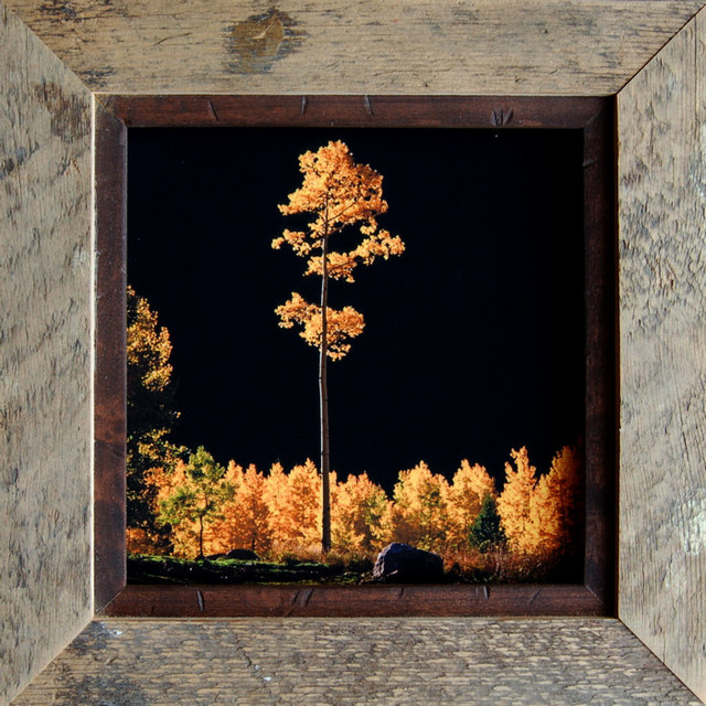 rustic frames barn wood frame with 5 alder inset a 11x17 rustic