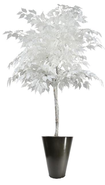 6 White Ficus Tree Round Zinc 3086 Contemporary