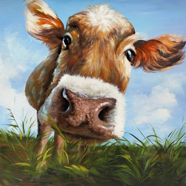 Cow In Field Canvas Print, 24x24.