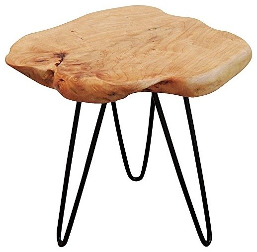 Cedar Wood Stump Small End Table rustic-side-tables-and-end-  sc 1 st  Houzz & Cedar Wood Stump Small End Table - Rustic - Side Tables And End ... islam-shia.org