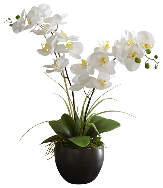 White Silk Orchid Design In Black Bowl Traditional
